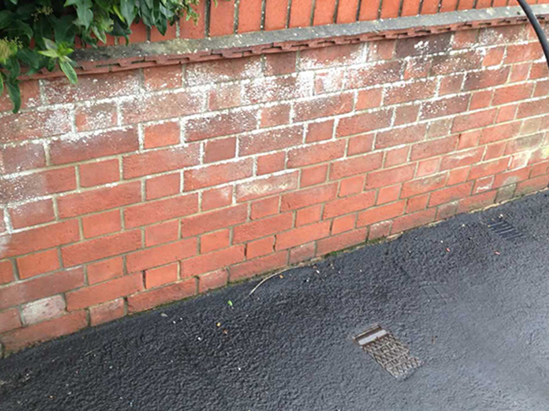 Brick Cleaning - Before